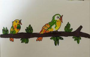 Story of Birds